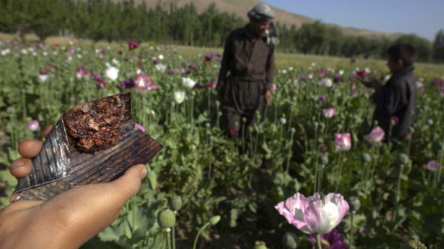 Russia's Afghan addiction