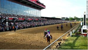 California Chrome #3, ridden by Victor Espinoza, races accross the finishline to win the 139th running of the Preakness Stakes at Pimlico Race Course on May 17, 2014 in Baltimore, Maryland. (Photo by Matthew Stockman/Getty Images)