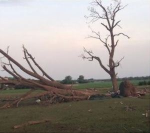 A look at damage as the sun comes up in Pilger, Nebraska. Photo credit: Indra Petersons.